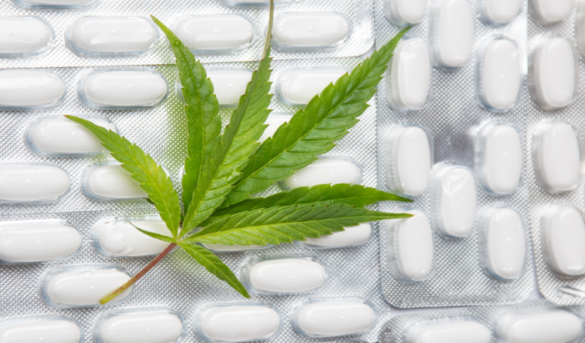 Research begins into effectiveness of cannabis for treating PTSD symptoms - cannabis research into post-traumatic-stress-disorder(s)